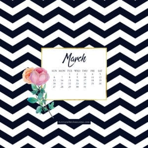 iPad March 2016 via Krista Smith at ActivateHerAwesome.com